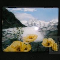 Ноутбук. Тюльпаны