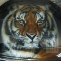 Тигр-1