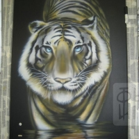 Тигр. Аэрография
