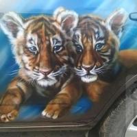 Тигрята toyota rav 4