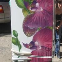 Холодильник Орхидея