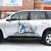 Toyota Prado В Подарок
